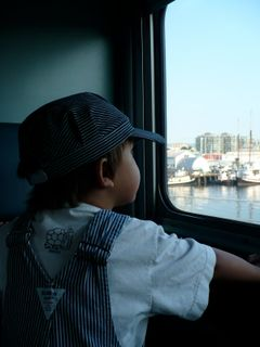 Deetman_train_window