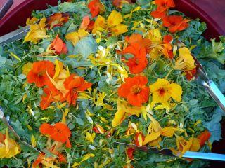 Flower salad2_2