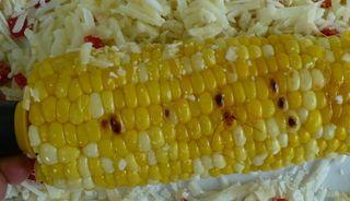 Corn0_2