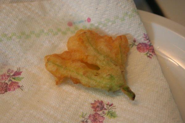 Zucchiniblossoms11